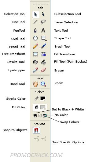 Adobe Animate Crack + Torrent Full Download (2020)